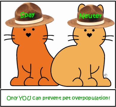 77 best images about spay or neuter your pet on pinterest