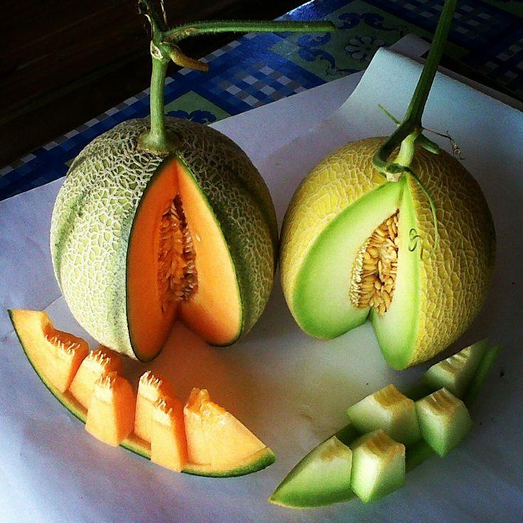Left: Rangipo Melon Right: Golden Emerald Melon