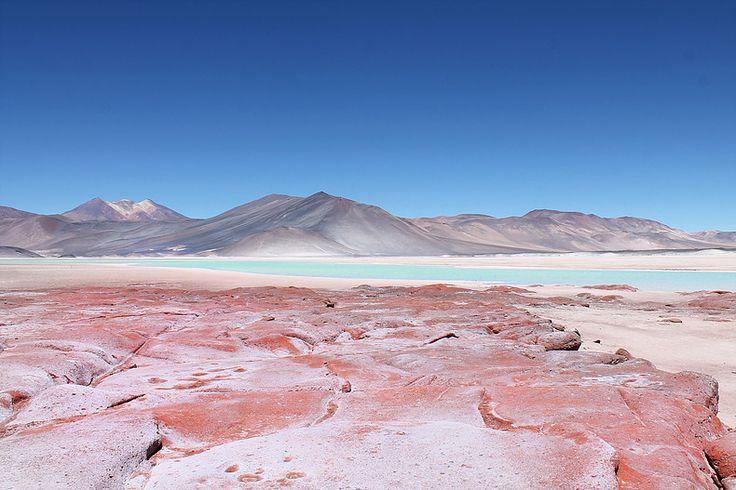 Deserto do Atacama - Lagunas Altiplânicas & Piedras Rojas   livre