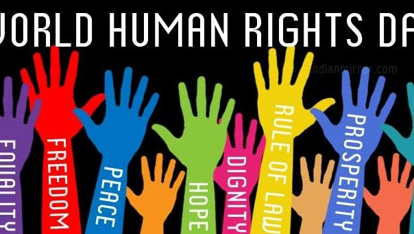 Definition of Human Rights in Our Society.