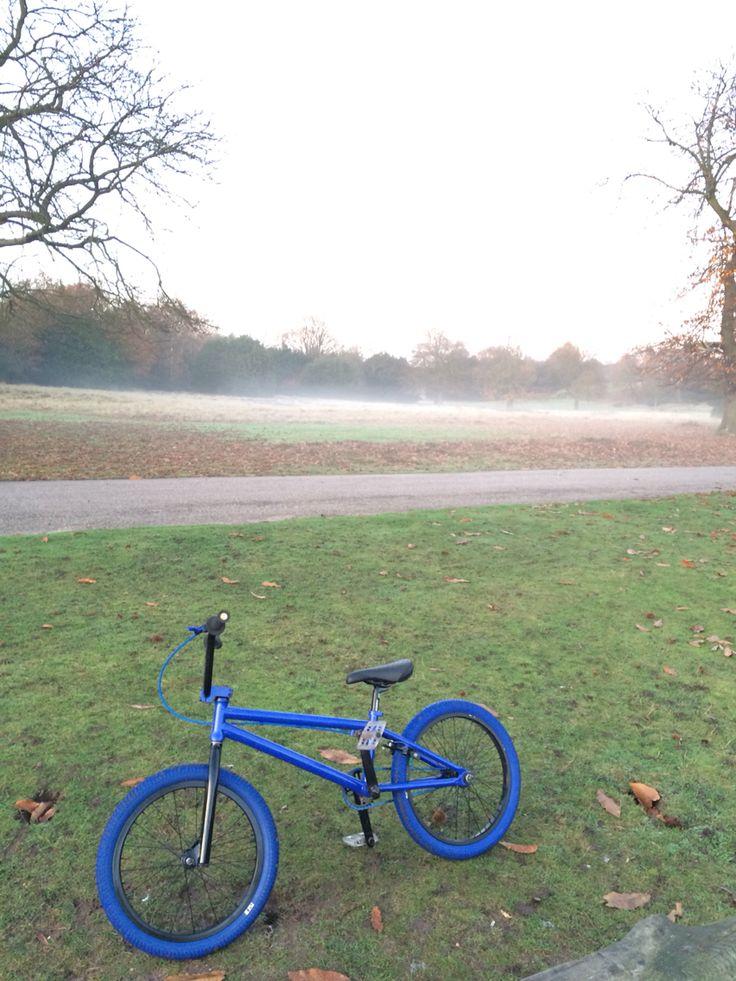 Jazz blue bmx Sutton park little bit of frost