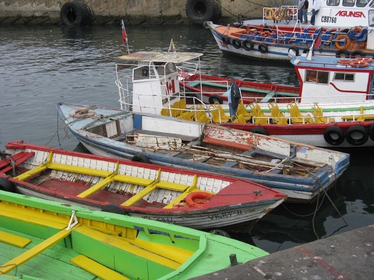 Barcos (boats) at port. Valparaiso, Chile