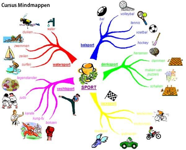 Mindmappen is een noteertechniek waar je op eenvoudige wijze complexe informatie kunt weergeven, zodat je overzicht krijgt en het gemakkelijk kunt onthouden. De techniek is breed inzetbaar; in werk, studie of privé. Met mindmappen kun je complexe informatie eenvoudig ordenen om overzicht te creëren, waardoor het gemakkelijker te onthouden is of inzichtelijker is gemaakt.