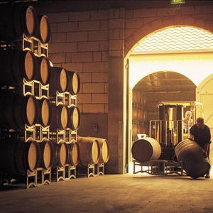 Wine cellar, Coonawarra, South Australia - it may be flat as a pancake, but it…