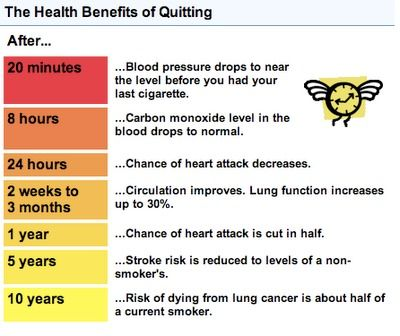 best 25+ benefits of stopping smoking ideas on pinterest | quit, Skeleton
