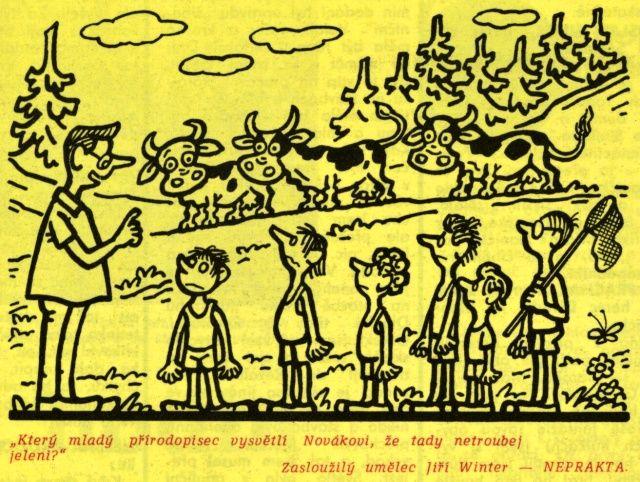 http://www.daildeca.cz/ilustrace/18neprakta/31stz2/54.jpg