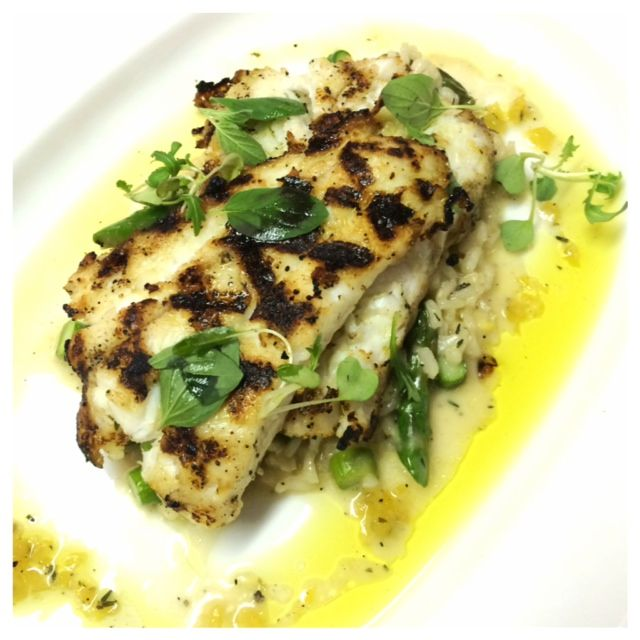 Wood-grilled Fluke with fennel and asparagus risotto