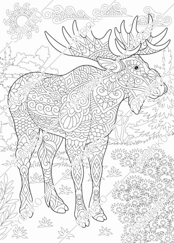 Animals Coloring Book Pdf Free Download Inspirational Coloring Pages Moose Deer In Forest Anim Animal Coloring Pages Ocean Coloring Pages Animal Coloring Books