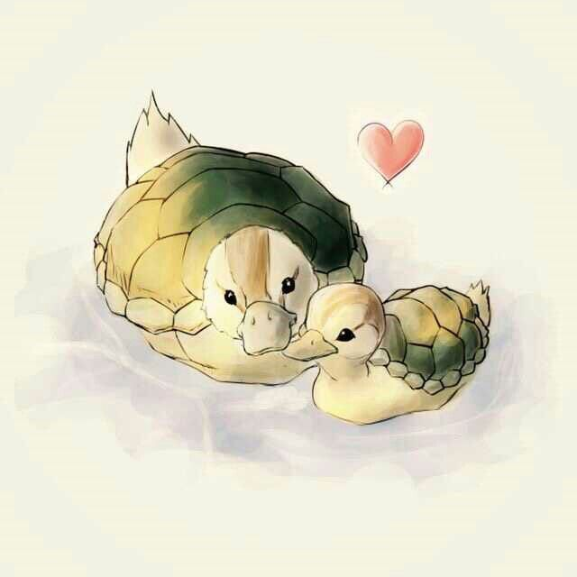 Turtle ducks, mother, baby, cute; Avatar: the Last Airbender