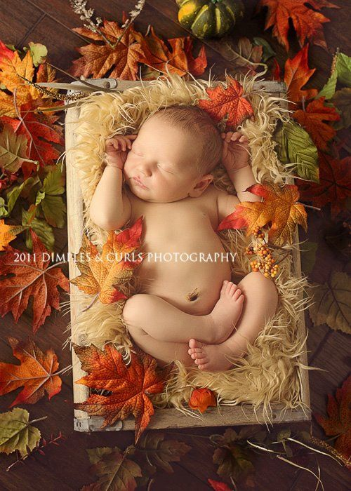 Find and save ideas about Fall baby pictures on Pinterest. | See more ideas about Fall baby photos, Fall baby pics and Halloween baby pictures.