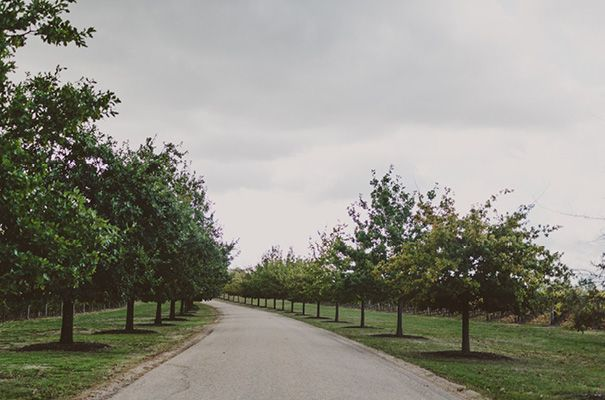 The driveway at Stones of the Yarra Valley