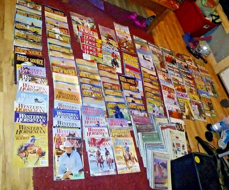 HUGE LOT Horse Magazines back issue Horse & Rider, Equus +any more pic n choose  | Books, Magazine Back Issues | eBay!