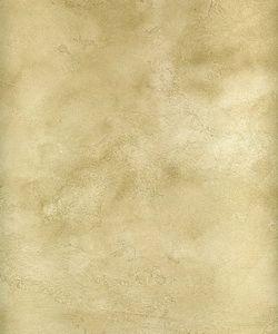 Marmoquartz Finishes http://www.paintandplasters.com/marmoquartz/