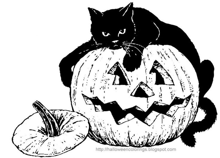 Halloween Cat Coloring Pages Festival Collections Coloring