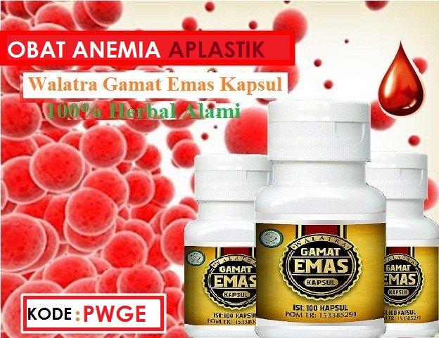 Obat Herbal Anemia Aplastik adalah Walatra Gamat Emas Kapsul Obat Herbal Dari Ekstrak Teripang Emas Yang Telah Terbukti Ampuh Dalam sembuhkan Penyakit Anemia