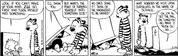 """Calvin and Hobbes, March 26, 1987 - Ok, I'm in. Set the dial on """"Lungfish."""" No, make it """"Must Ox.""""... No..."""