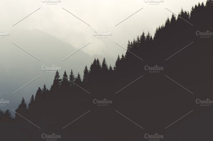 Tree tops by Alex Lutzai on @creativemarket