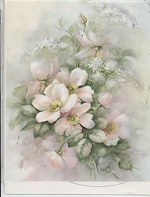 Single-Pink-Rose-Queen-Annes-Lace-62-by-Sonie-Ames-China-Painting-Study-73