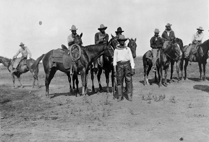 About Wild Horses — The History of Outer Banks Spanish Mustang Horses