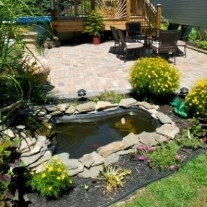20 best images about pond plans on pinterest gardens for Water garden construction