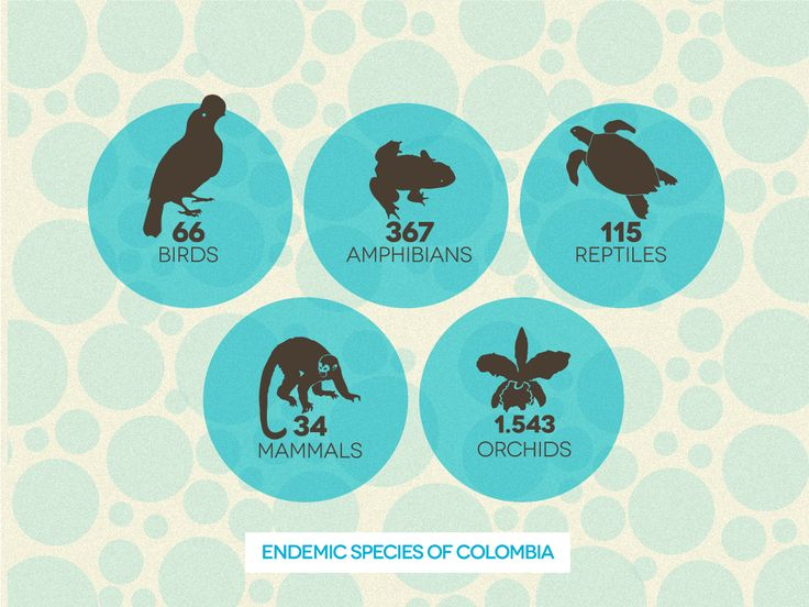 Number of exclusive species in Colombia