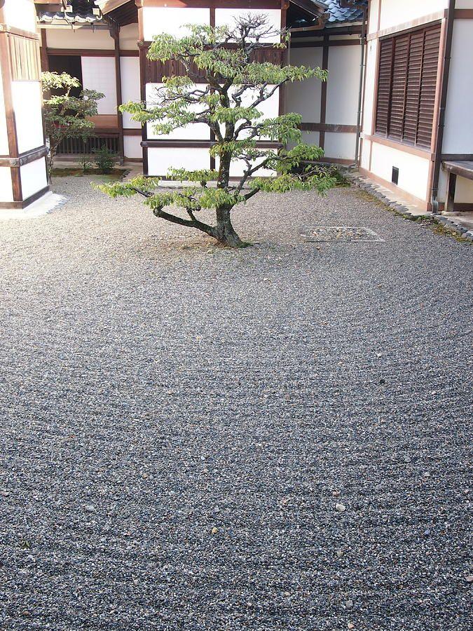 Sand Japanese garden with pine tree and white houses, Hikone, Shiga.