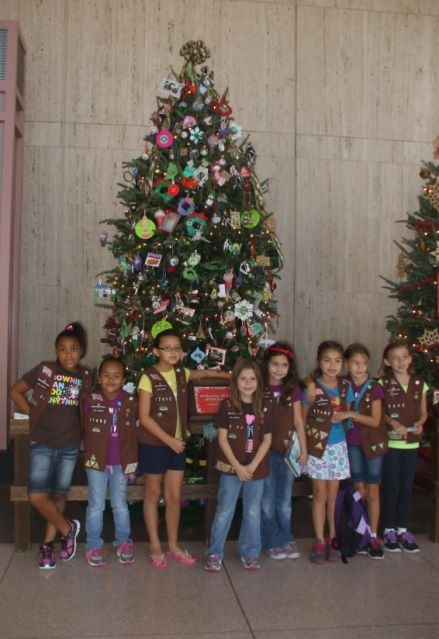 Houston Museum Natural Science Scout