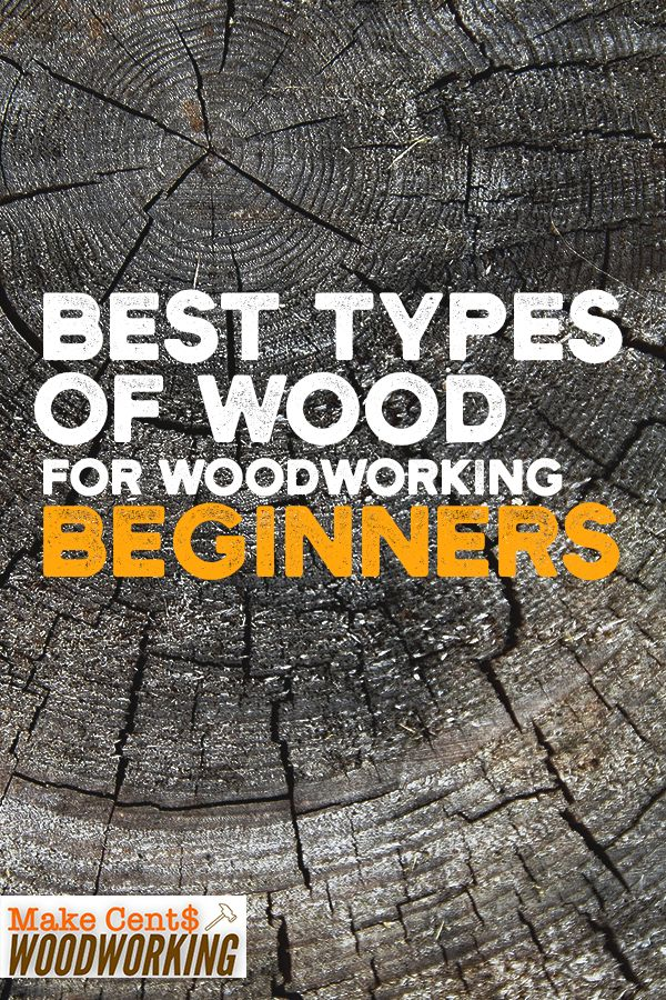 6 Best Types of Wood for Woodworking Beginners