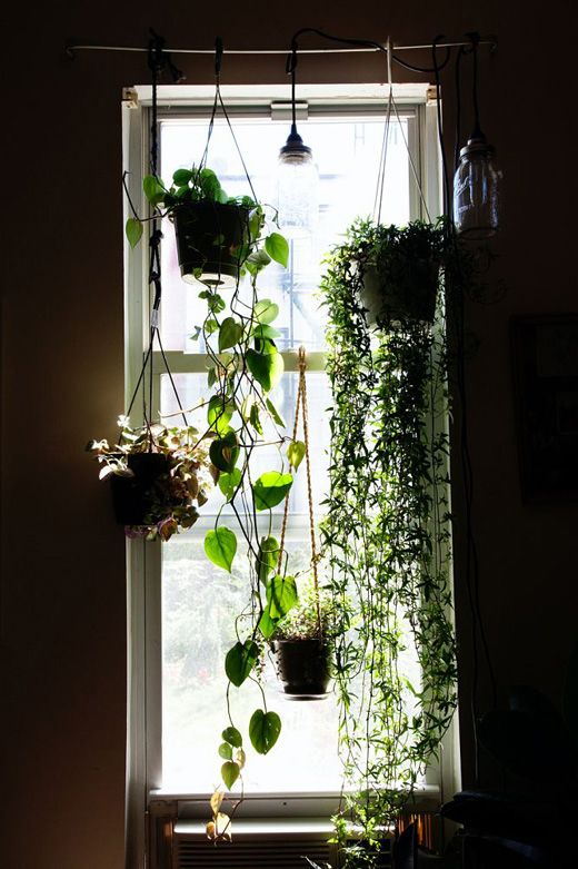 Use a curtain rod to hang plants in front of windows.  Get nice pots and hang at different heights.