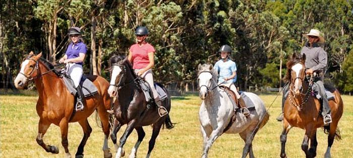Top 10 Things to do Margaret River: #8 Horse Riding at The Horse Resort #MargaretRiver #WesternAustralia #Top10ThingsToDo #ExperienceOzNZ #WhatWillYouDo #Australia #travel #destination