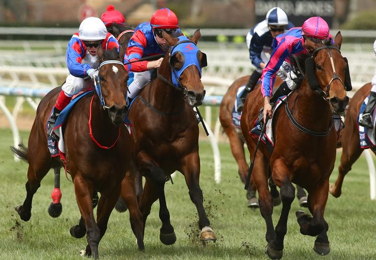 Fast 'n' Rocking wins the Alannah Hill Plate