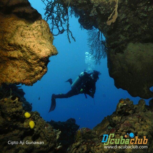 Dive Nusa Penida Bali