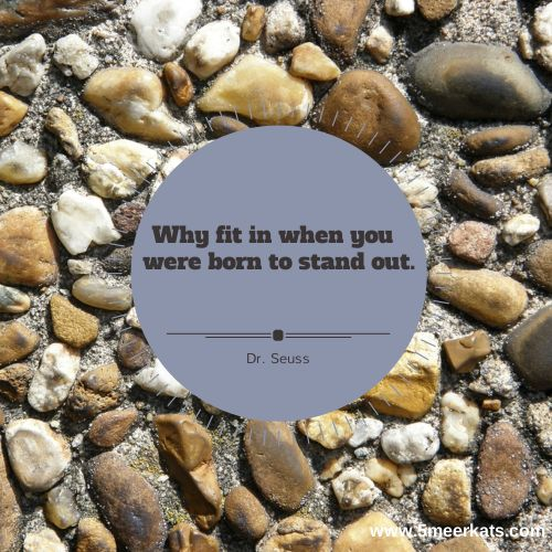 why fit in when you were born to stand out. #DrSeuss