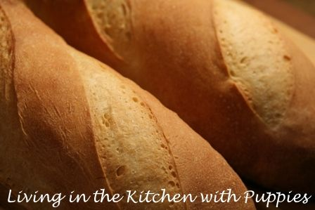 Living in the Kitchen with Puppies: Durum Semolina Bread