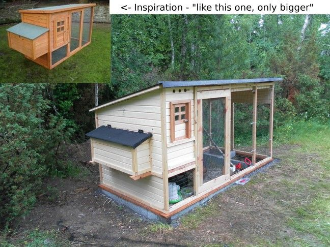 Backyard Chicken Coop