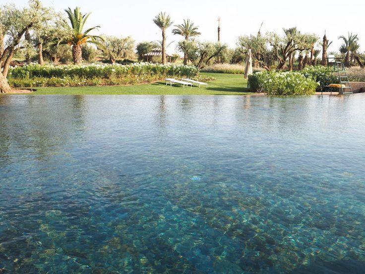 http://www.lafianceedupanda.com/2015/10/05/lune-de-miel-hotel-royal-palm-de-marrakech-avis/