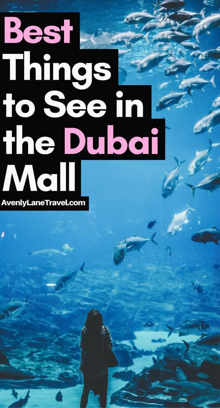 Dubai Tourist Attractions: The best things to see in the Dubai Mall! Avenlylanetravel.com #Dubai #travel #avenlylanetravel