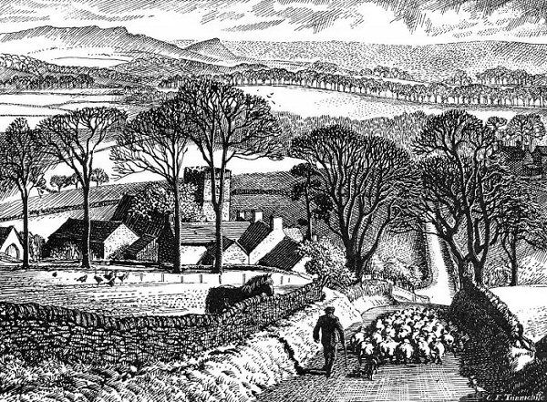 Tunnicliffe Society - Summer Diary Landscapes