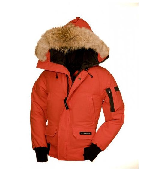 Canada Goose down outlet store - Wholesale Cheap Canada Goose Youth Chilliwack Bomber Bonfire ...