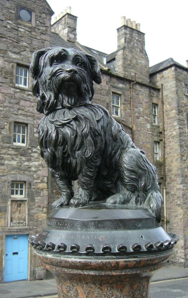 statue of Greyfriars Bobby in Edinburgh - a Skye terrier who sat by his master's grave for 14 years