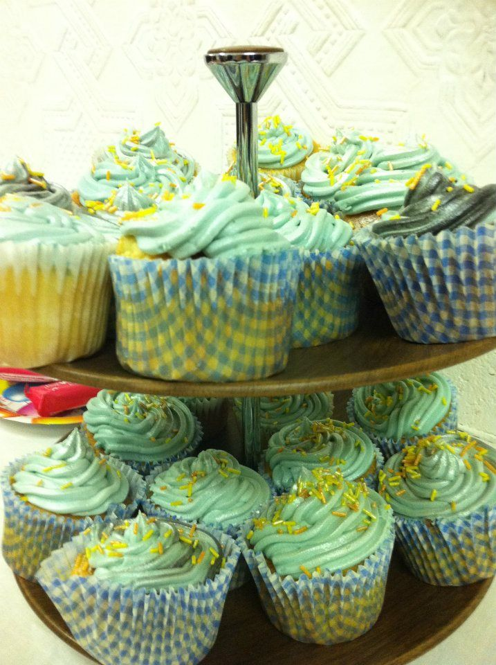 Blue cupcakes for a blue book: Felicity McCall's 'Large Mammals, Stick Insects and Other Social Misfits'