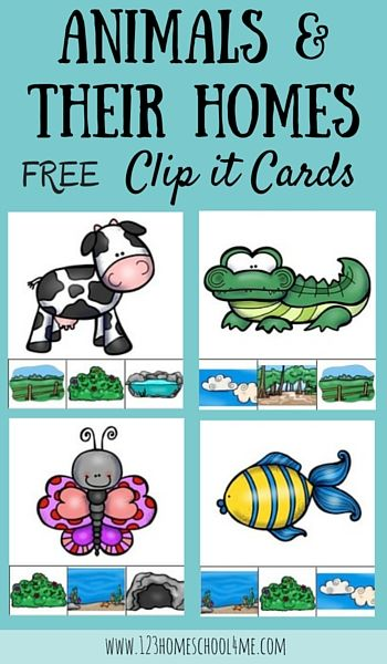 FREE Animal Homes Clip it Cards - Preschool and Kindergarten age kids will love learning about habitats with this fun educational activity identifying 12 animal homes. (science, homeschool, free printable)