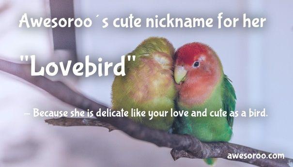 lovebird girls name
