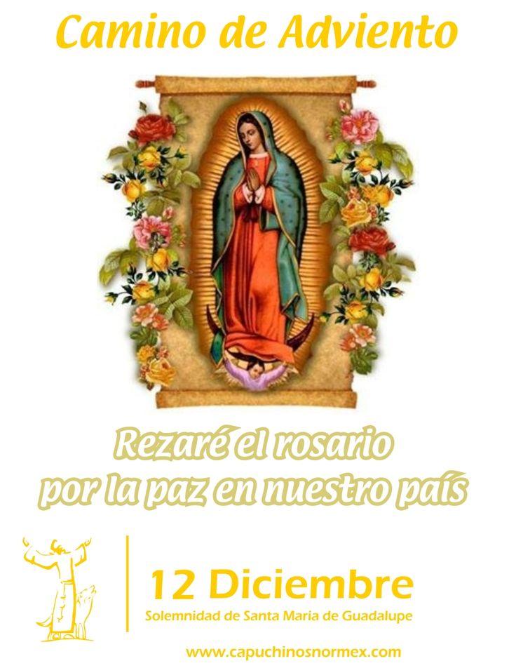 ¡Nuestra madre de Guadalupe nos guía en nuestro camino de Adviento!
