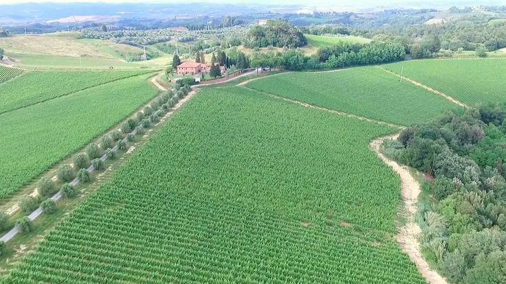 E' già il momento di pesare alla stagione che verrà. Pianificazione di immagine e marketing diventa fondamentale per strutture recettive che lavorano molto sul web, come agriturismi e/o aziende agricole.   #4K #AGRITURISMO #AZIENDAAGRICOLA #DRONE #HD #montaione #montespertoli #olionovo #PROMOVIDEO #RIPRESEAEREE #TUSCANY #videoaziendali #videomaker #wineproduction
