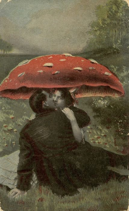 love under mushroomVintage Postcards, Magic Mushrooms, Herbs, Vintage Wardrobe, Art, Love Is, Book, Mushrooms Cap, The Moon
