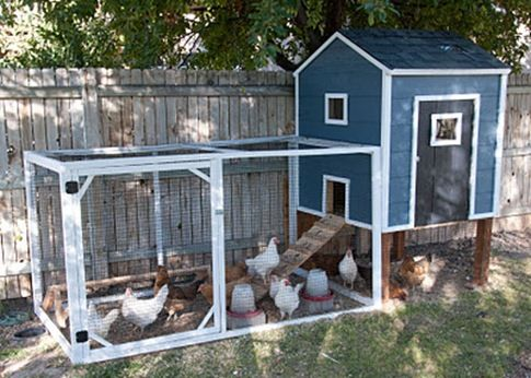 How to build a fab chicken coop, good instructions. Insulation is missing though!