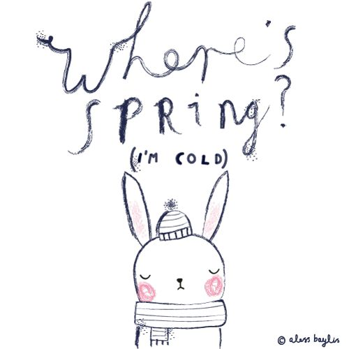 where's spring? I'm cold | Aless Baylis  http://thisisgold.co.uk