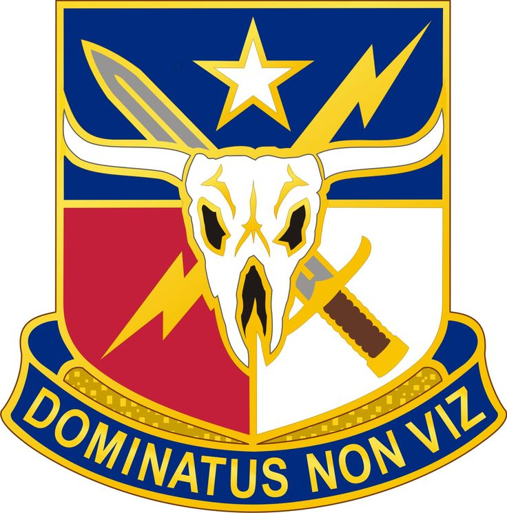 71ST INFORMATION OPERATIONS GROUP
