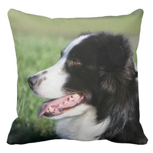 Border Collie Puppy Laying Down Throw Pillow | Zazzle.com   – ANIMALS – Dog Lovers